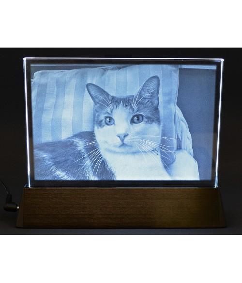 Pet on Rectangle with Luminary Base, Sub-Surface Laser