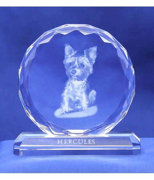 Circular Jewel Small, Favorite Pet, Sub-Surface Laser