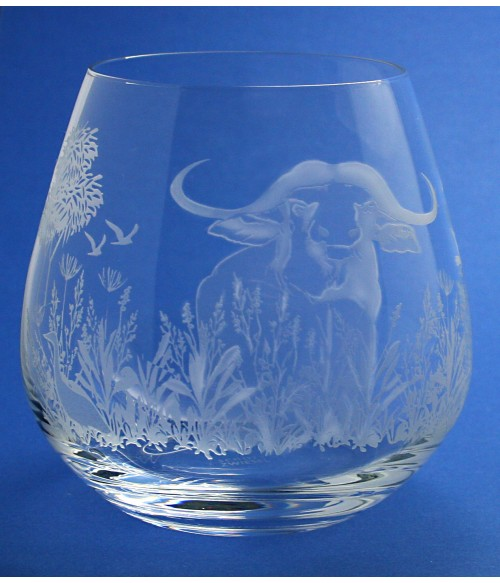 Wildlife Cape Buffalo Scene
