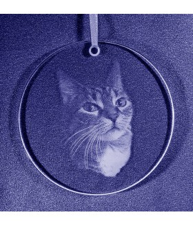 Sun Catcher, Favorite Pet, Sub-Surface Laser