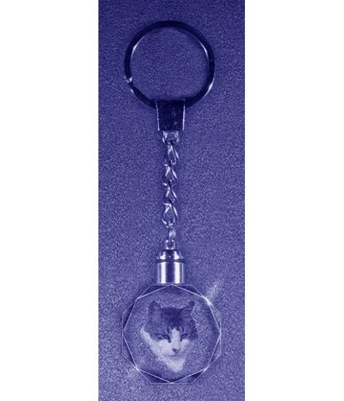 Key Chain, Favorite Pet, Sub-Surface Laser